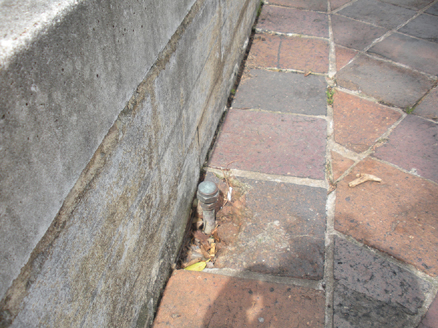Fitzroy Gardens, Kings Cross, neglect (image 3b)